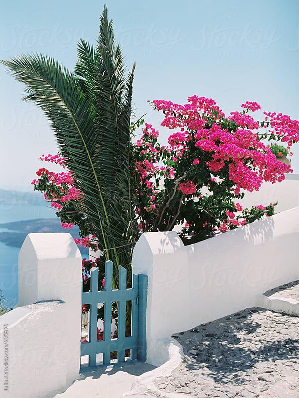 House anв garden in Santorini, Greece by Julia K for Stocksy United