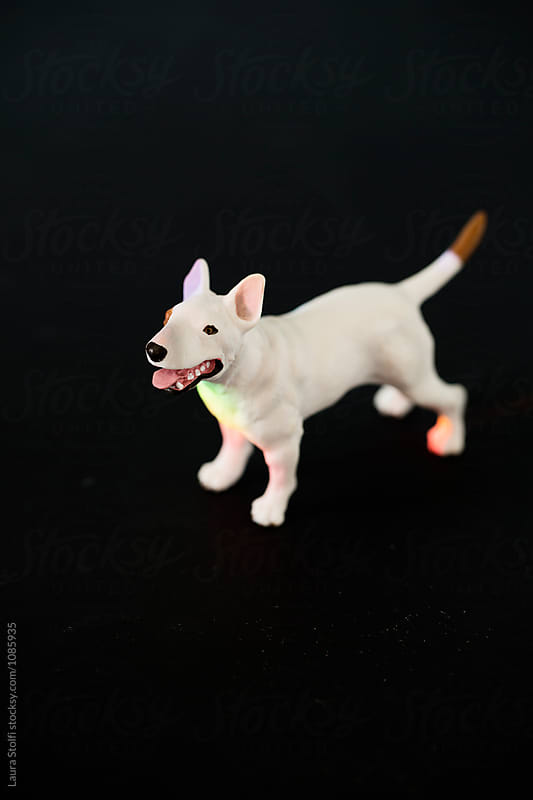 Rainbow rays falling on terrier dog plastic puppet by Laura Stolfi for Stocksy United