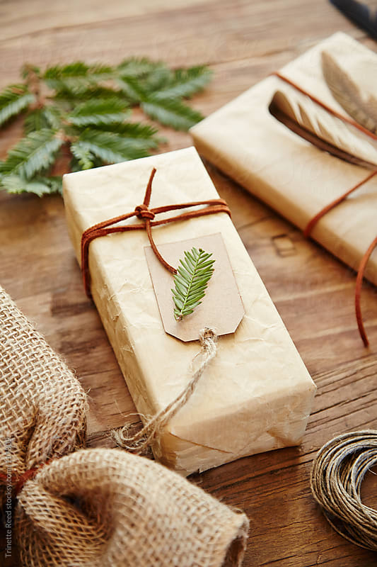 Gift with homemade wrapping paper with leather twine and pine by Trinette Reed for Stocksy United