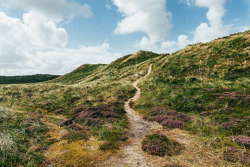 Path in Grassy Dune Landscape on Sylt Island (North Germany) by Julien L. Balmer for Stocksy United