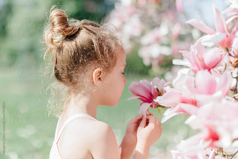 little girl smells the blossoms of a magnolia tree in spring by Meaghan Curry for Stocksy United