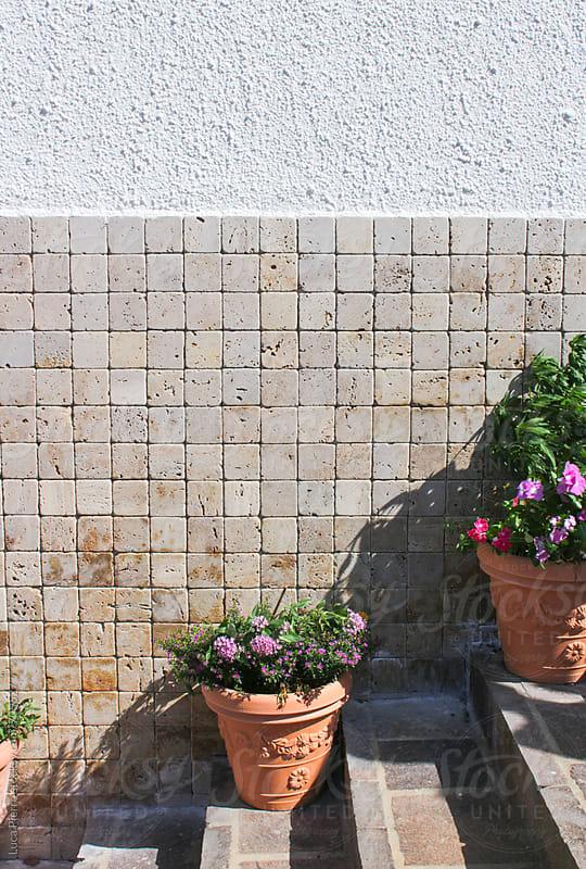 Flowers on stairs, Sardinia by Luca Pierro for Stocksy United