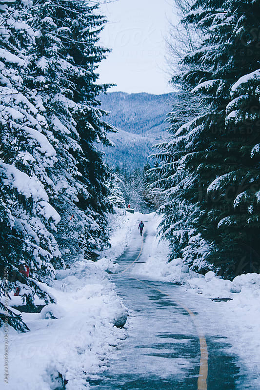 Path with snow in winter with pine trees and mountains and a per by Alejandro Moreno de Carlos for Stocksy United