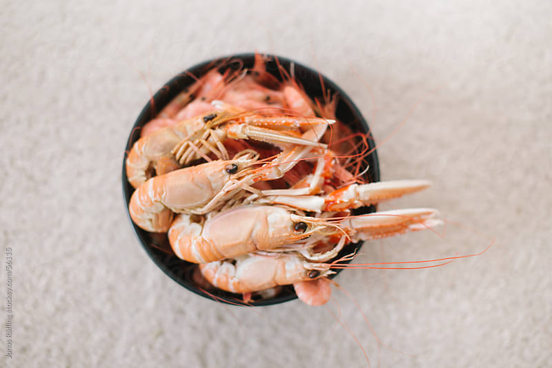 Shrimps and Crayfish in a black bowl by Jonas Räfling for Stocksy United