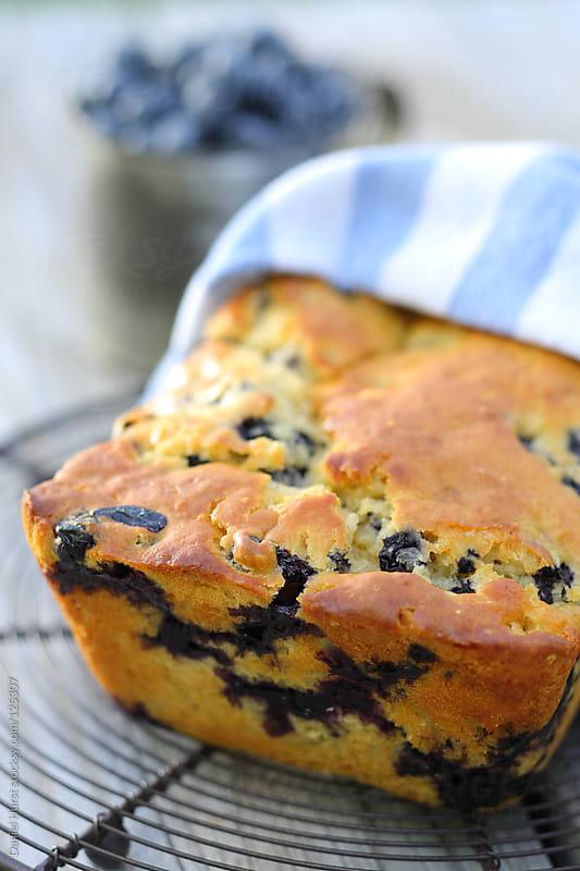 Blueberry bread by Daniel Hurst for Stocksy United