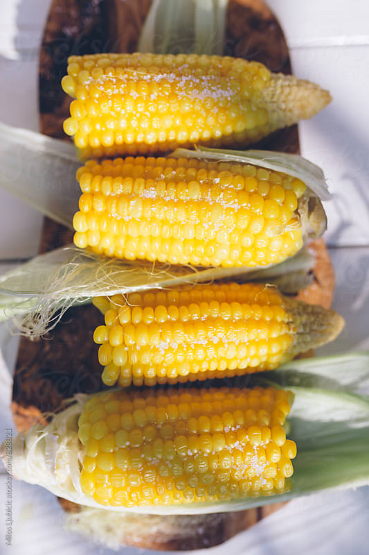Corn by Milos Ljubicic for Stocksy United