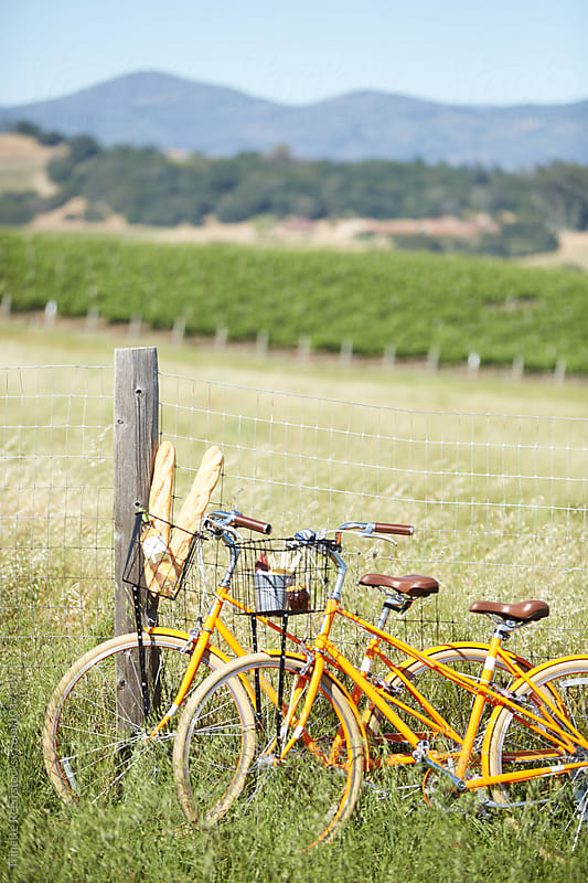 Cruiser bikes in Napa Valley, California by Trinette Reed for Stocksy United