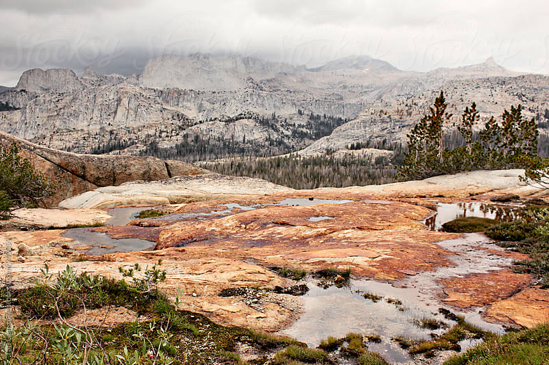 Wild landscape in Yosemite National Park by Tari Gunstone for Stocksy United