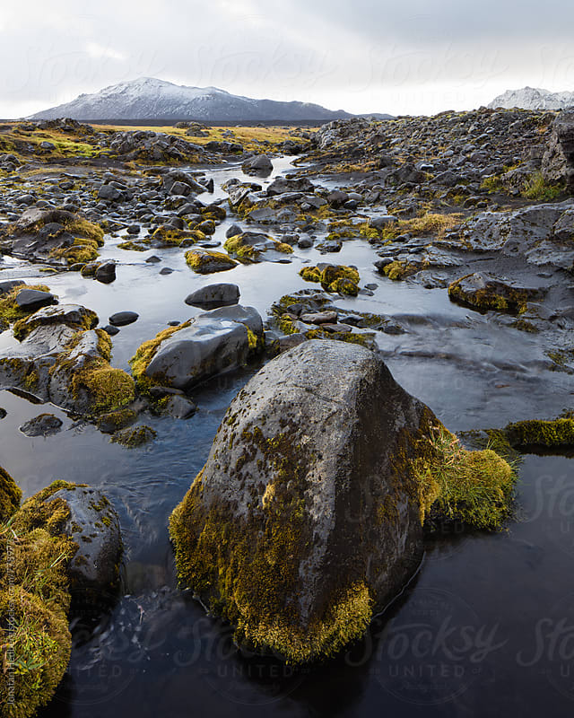 Rocks in the stream by Jonatan Hedberg for Stocksy United