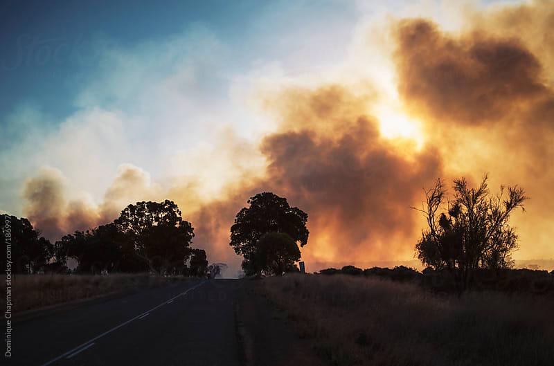Australian bushfire by Dominique Chapman for Stocksy United