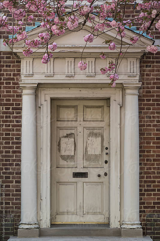 Cherry tree blossoms in front of a colonial house by Melanie Kintz for Stocksy United