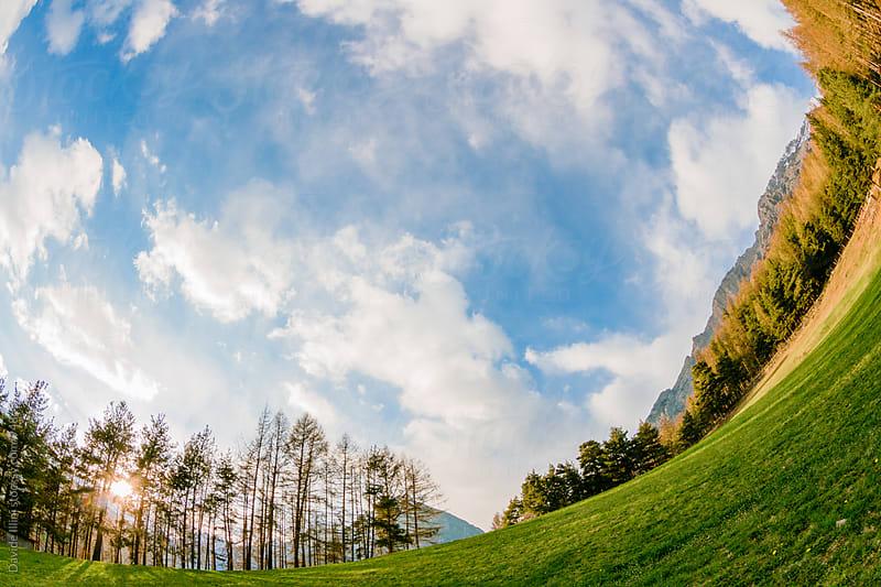 Landscape in the Stelvio National Park by Davide Illini for Stocksy United