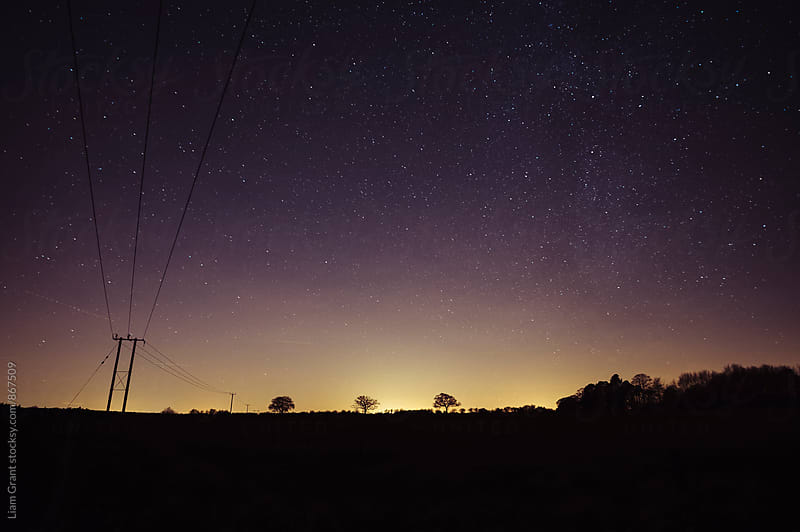 Star filled sky with tree silhouettes on the horizon. Norfolk, UK. by Liam Grant for Stocksy United
