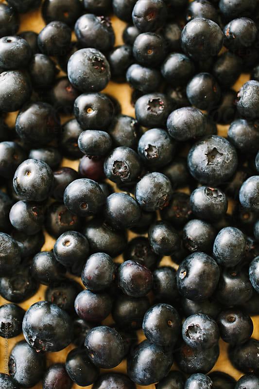 Fresh Blueberry Tart Dessert by Christine Han for Stocksy United