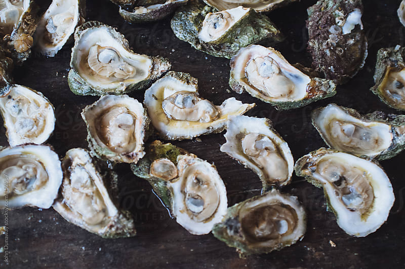Raw Oysters by John Dunaway for Stocksy United
