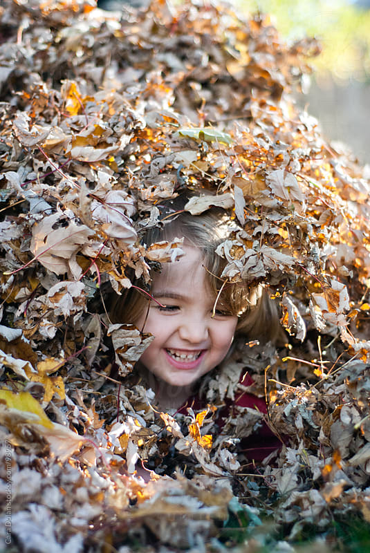 Little boy giggles as he plays in a large pile of dried leaves that have fallen in his backyard by Cara Dolan for Stocksy United