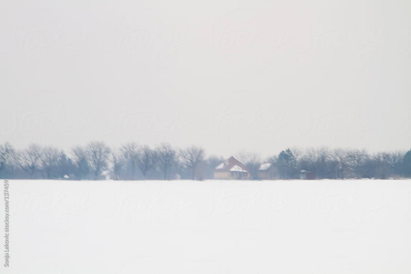 white simple winter landscape by Sonja Lekovic for Stocksy United