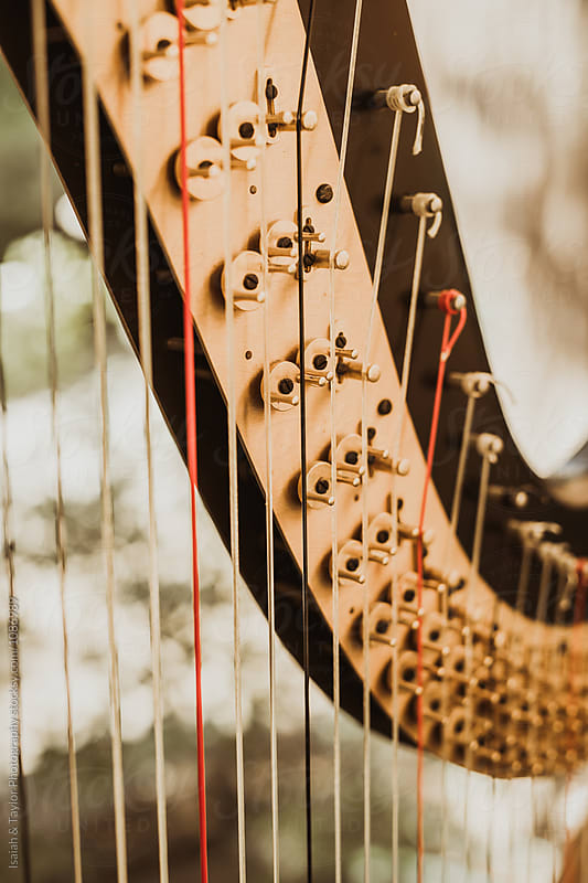 Harp Detail by Isaiah & Taylor Photography for Stocksy United