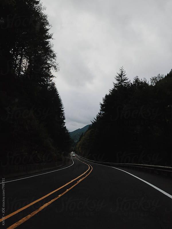 Driving on a cloudy, winding road through the forest by KATIE + JOE for Stocksy United