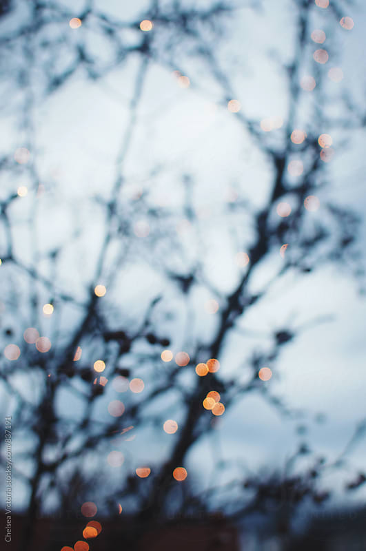 Out of focus bare branches and Christmas lights by Chelsea Victoria for Stocksy United