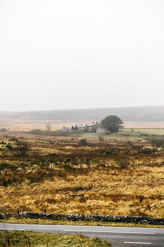 Dartmoor Landscape by Agencia for Stocksy United