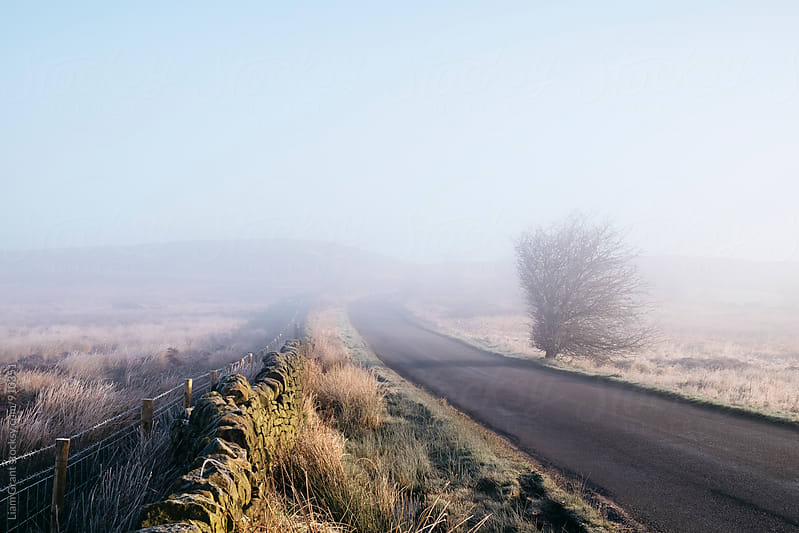 Frost and remote moorland road in the fog at sunrise. Beeley Moor, Derbyshire, UK. by Liam Grant for Stocksy United