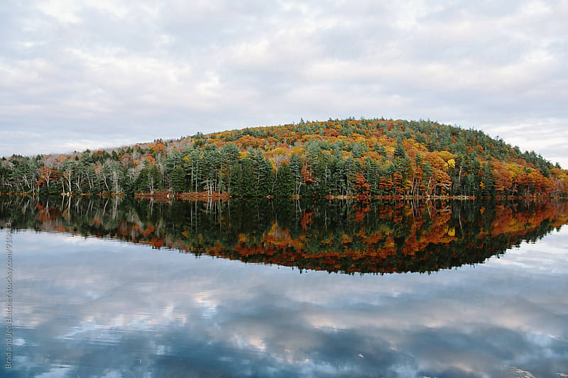 Fall Tree Line on Lake by Brad and Jen Butcher for Stocksy United