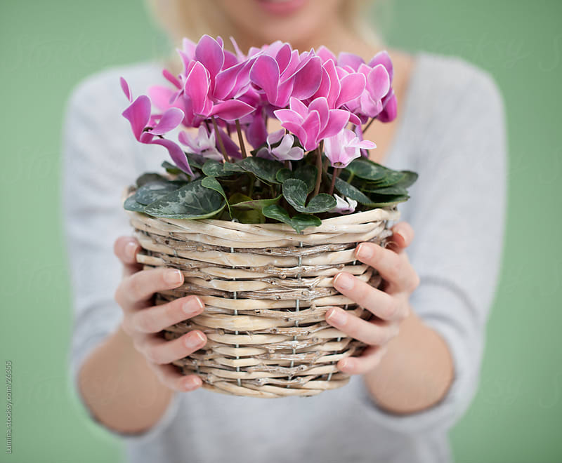 Woman Holding Potted Flowers by Lumina for Stocksy United