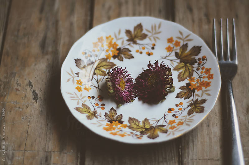 Flowers on a plate by Crissy Mitchell for Stocksy United