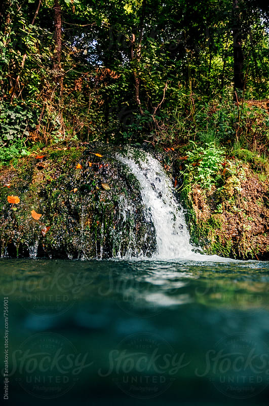 Small waterfall in the forest by Dimitrije Tanaskovic for Stocksy United