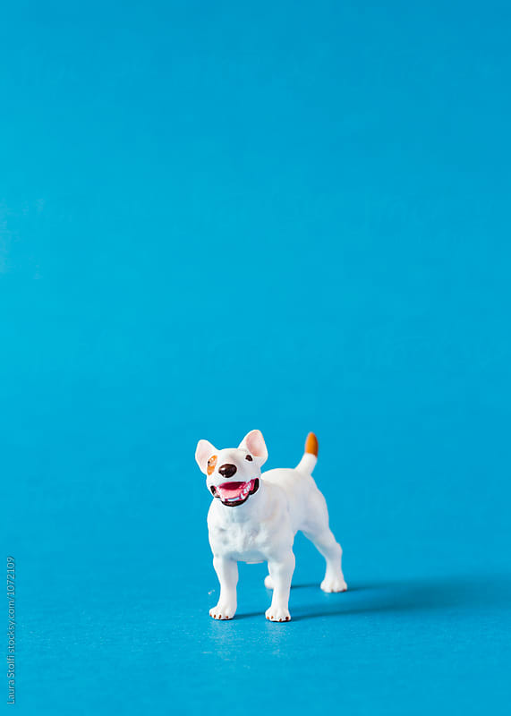 Amstaff dog shaped miniature on blue by Laura Stolfi for Stocksy United