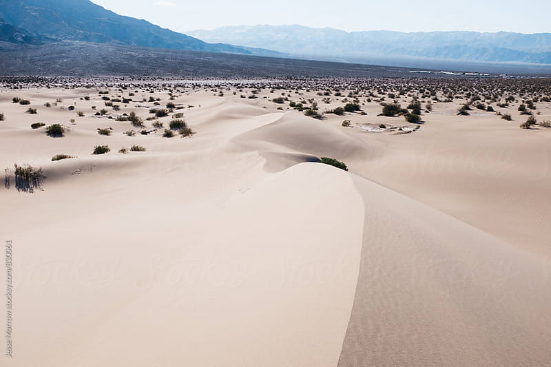 desert landscape sand dunes in death valley usa by Jesse Morrow for Stocksy United