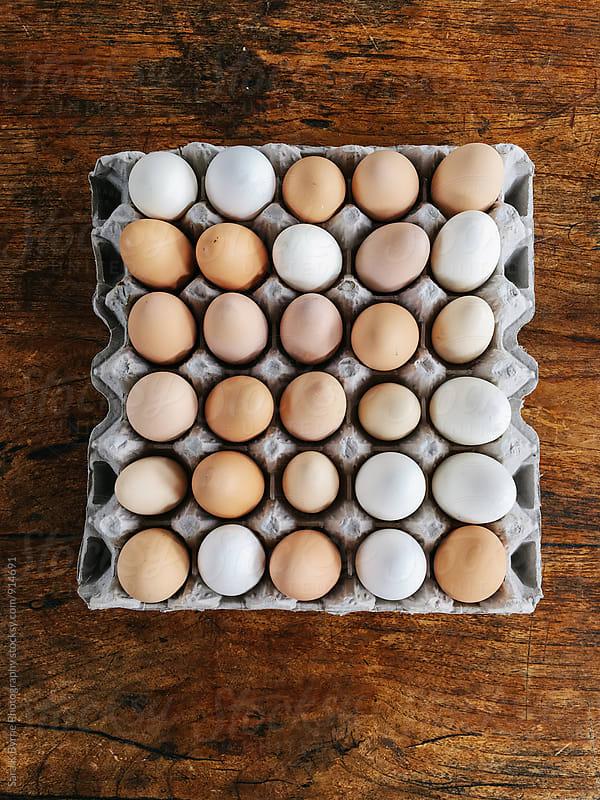 Fresh Eggs by Sara K Byrne Photography for Stocksy United