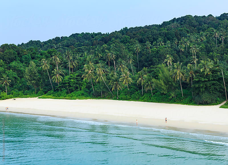 Tropical Beach by Felix Hug for Stocksy United