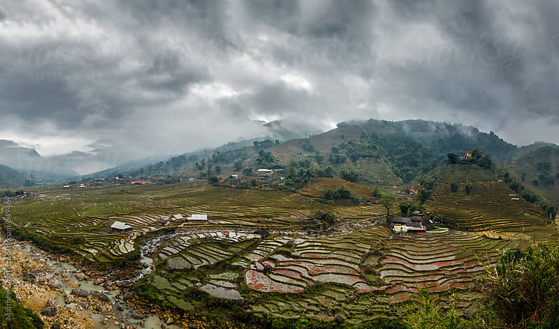 Farm Landscape View From Vietnam by Matthew Smith for Stocksy United