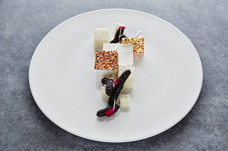Gourmet Dessert on plate by Trinette Reed for Stocksy United