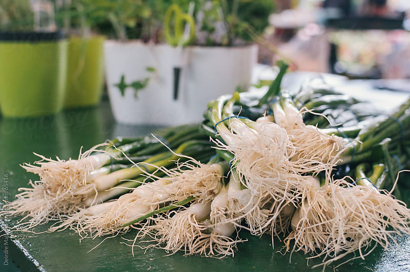 Green onions for sale at an outdoor market by Deirdre Malfatto for Stocksy United