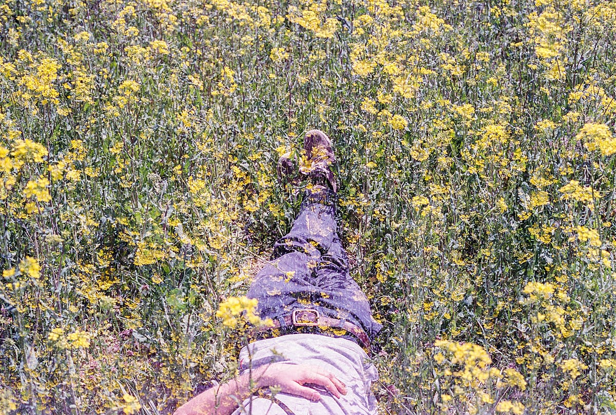 Young Man Lying Down In A Field Of Yellow Flowers In Spring
