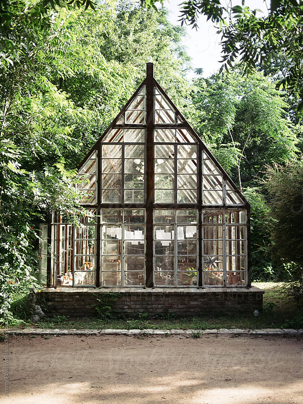 Rustic greenhouse in backyard surrounded by trees by Jeremy Pawlowski for Stocksy United