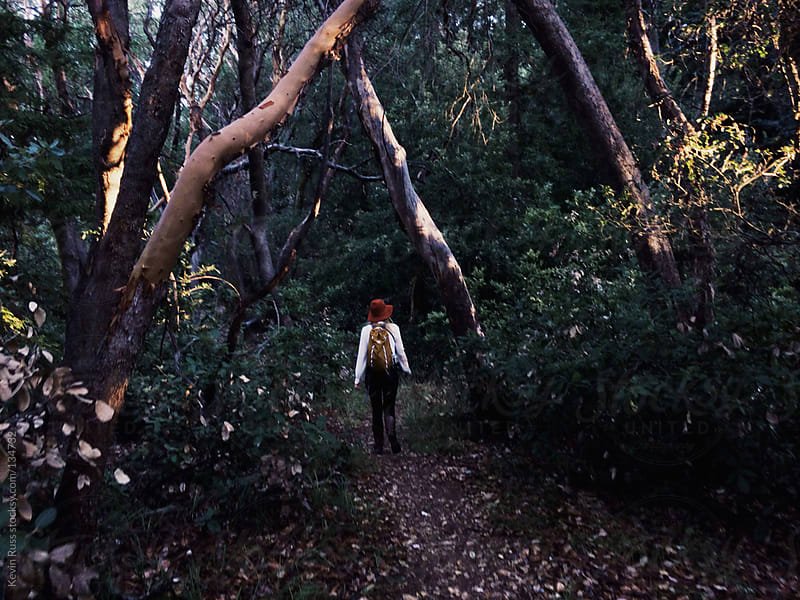 Woman Walking Through Dark Forest Canopy by Kevin Russ for Stocksy United