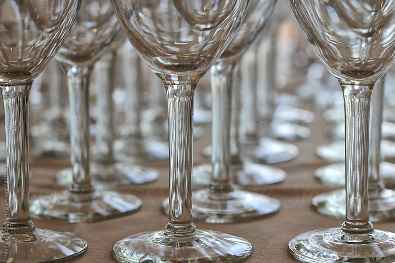 Close up of stems of wine glasses, lined up by Monica Murphy for Stocksy United