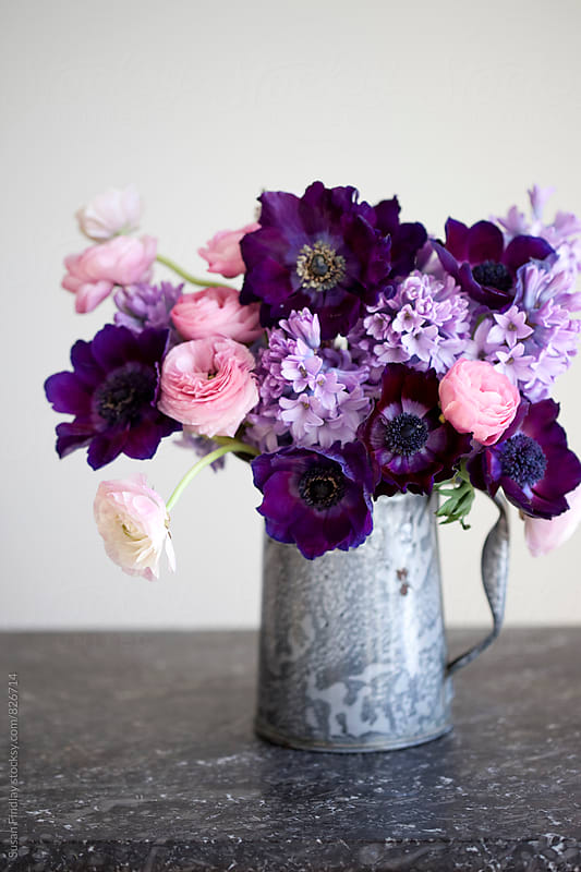 purplebouquet by Susan Findlay for Stocksy United