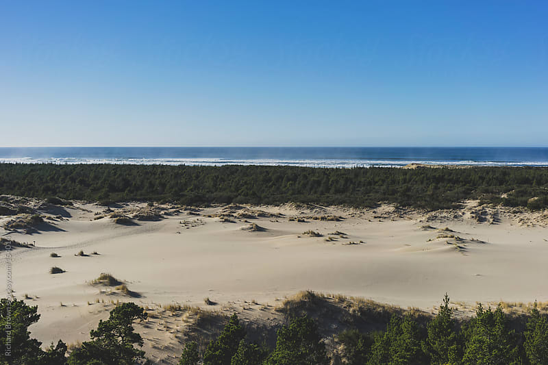 Oregon Dunes by Richard Brown for Stocksy United