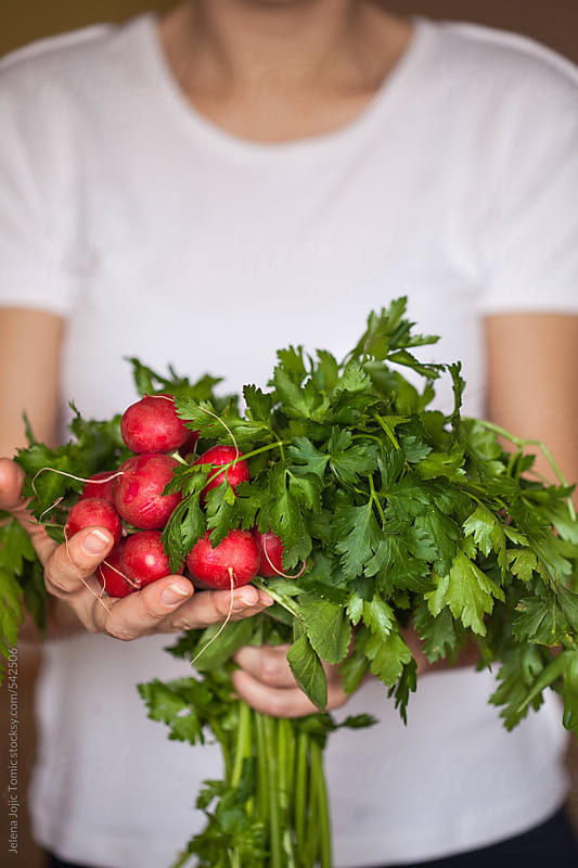 Fresh parsley and radishes by Jelena Jojic Tomic for Stocksy United
