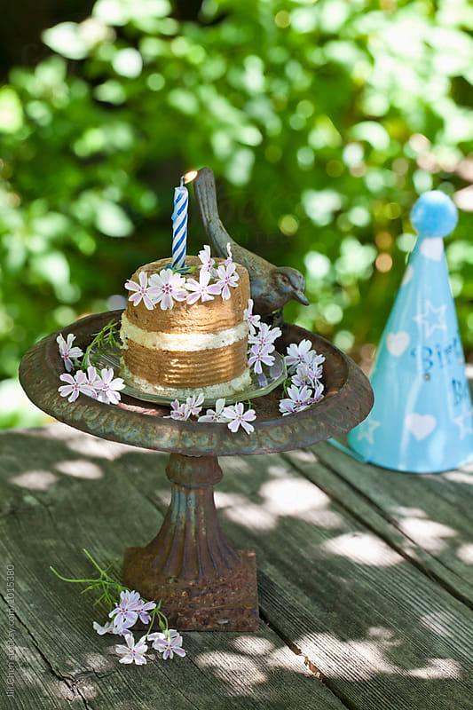 Dog Birthday Cake by Jill Chen for Stocksy United