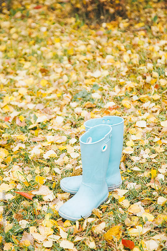 Small blue rubber shoes standing on yellow leaves by Danil Nevsky for Stocksy United