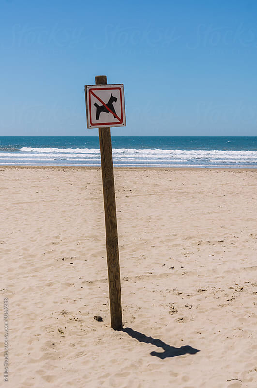 Sign at beach by Milles Studio for Stocksy United