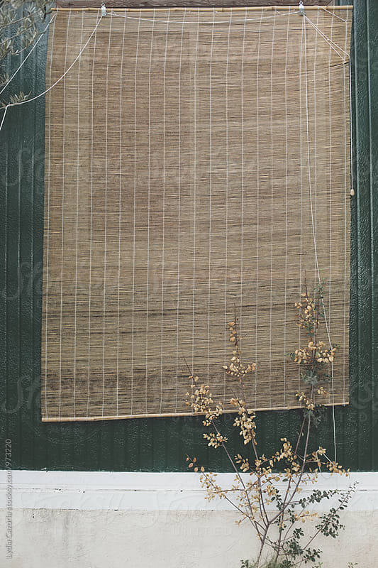 A old wooden curtain outside the a picturesque home by Lydia Cazorla for Stocksy United