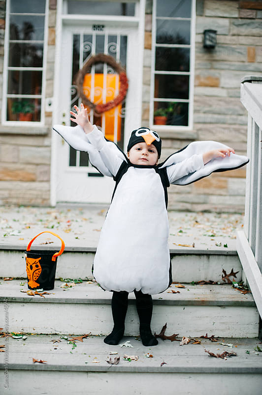 Flapping His Penguin Wings by Cameron Whitman for Stocksy United