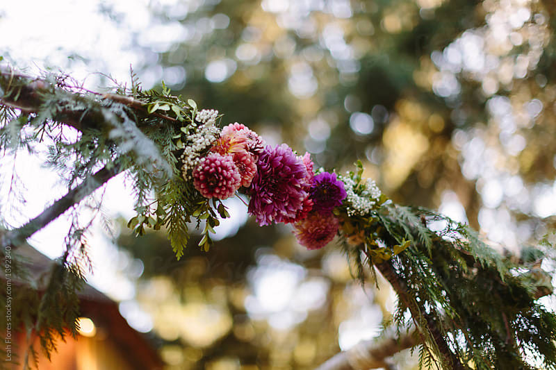 Flowers On Wedding Arbor By Leah Flores For Stocksy United